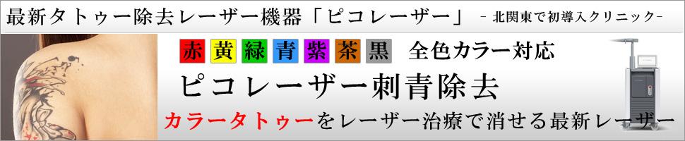 刺青・タトゥー除去 レーザー法