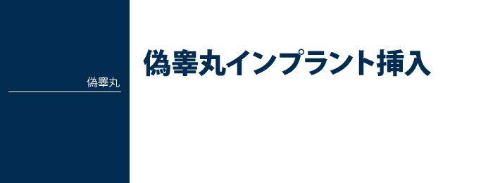 偽睾丸【人工睾丸】インプラント挿入